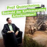 Interview: Schafft Deutschland die Energiewende?