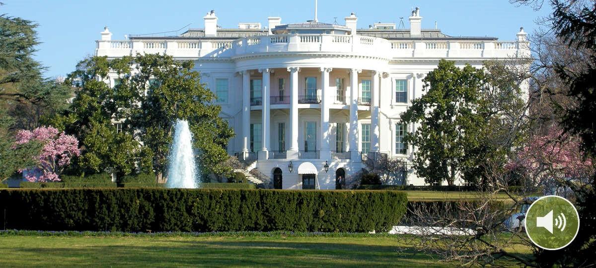 Podcast: US-Wahl: Klimaschutz great again?